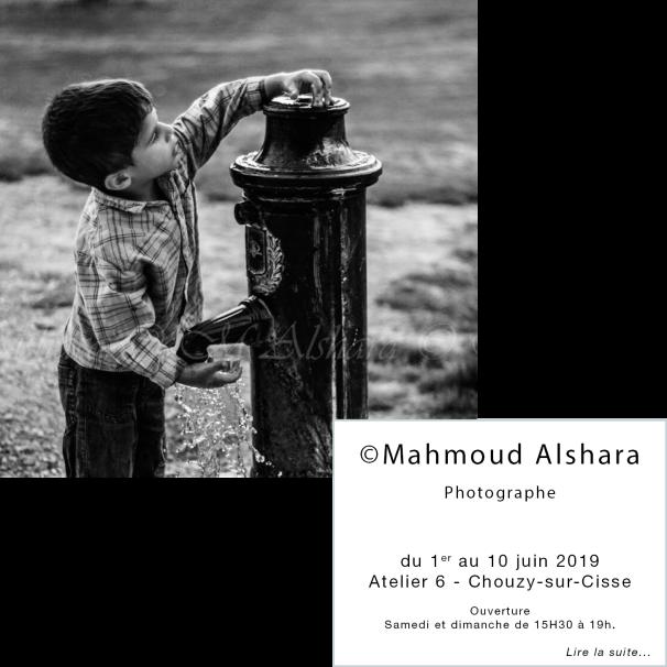 Mahmoud Alshara