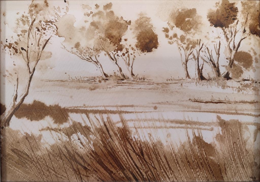 Un atelier de dessin au brou de noix, réalisé sans crayons et pinceaux, animé par Isabel da Rocha. Dessin de bord de Loire avec herbes et petits branchages. ©IdR
